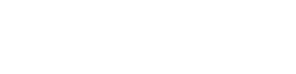 QI_Logo_150_NoTag white